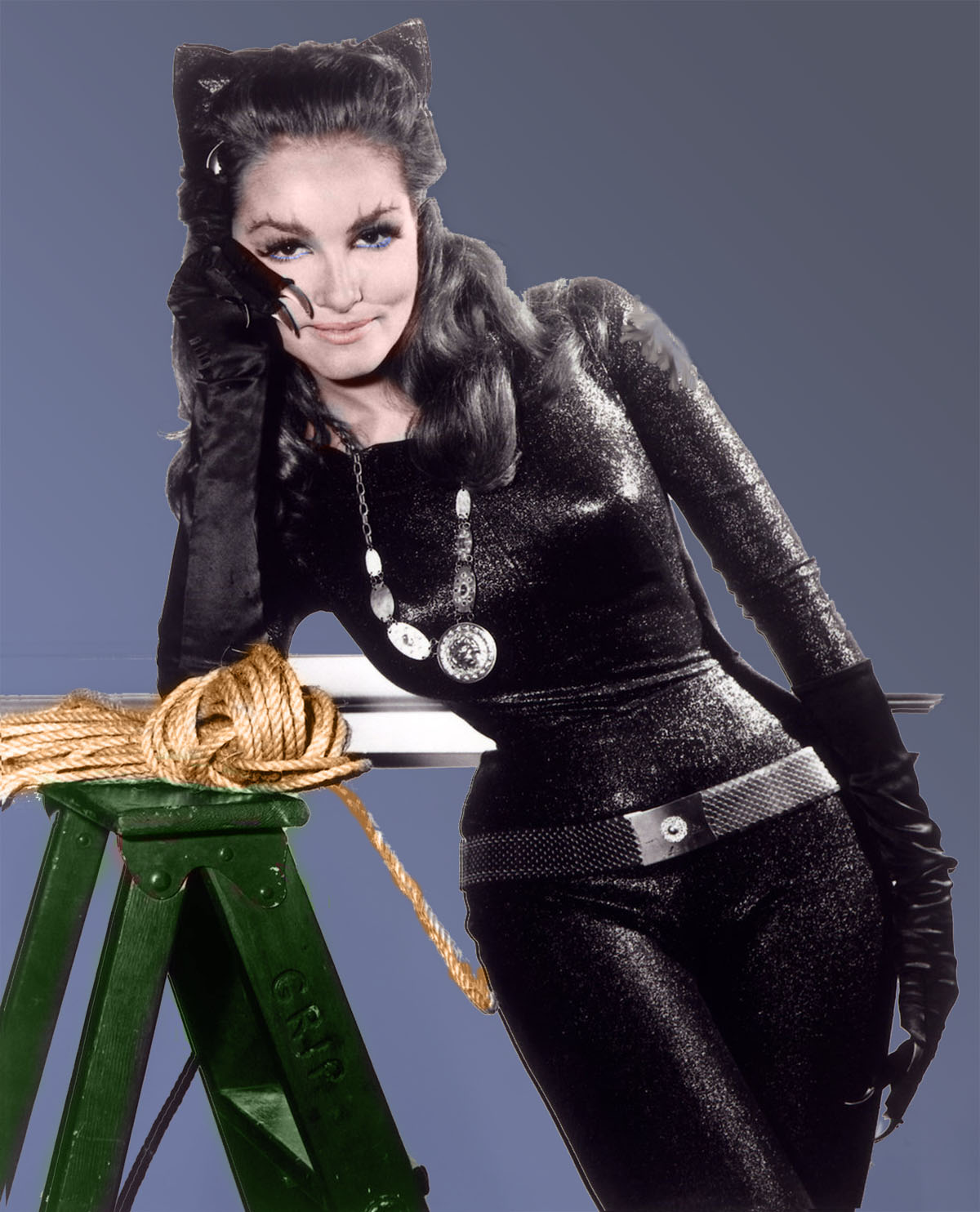 Catwoman_Julie_Newma