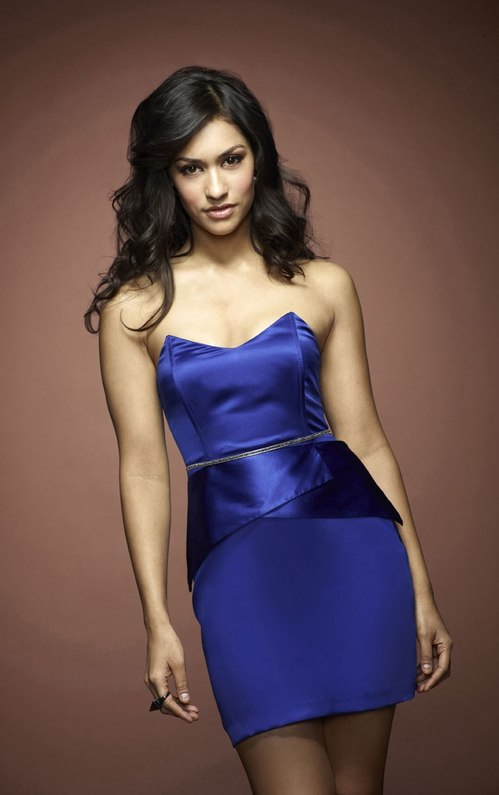Janina Gavankar blue dress